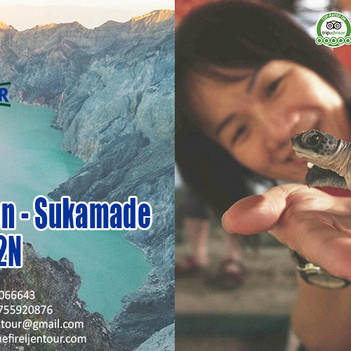 Bali Ijen Blue Fire Sukamade tour package 3D2N, Blue Fire Ijen Tour