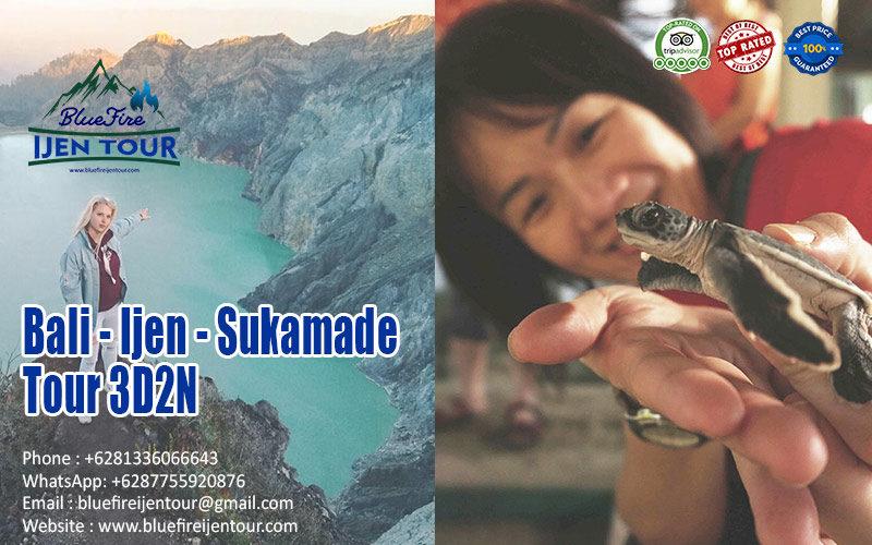 Bali Ijen Blue Fire Sukamade tour package 3D2N, Blue Fire Ijen Tour