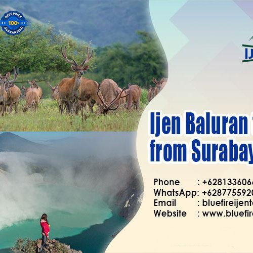 Ijen Baluran tour package from Surabaya 3D2N