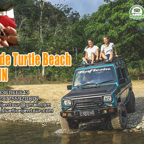 Sukamade turtle beach tour 2D1N, Sukamade Beach Tour